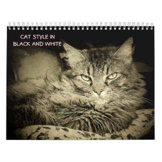 DJ's Cat Style in Black and White Calendar