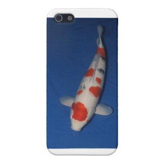 DKK Mature Champ Iphone iPhone SE/5/5s Cover