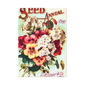 DM Ferry Flower Seeds Vintage Advertisement Canvas Print