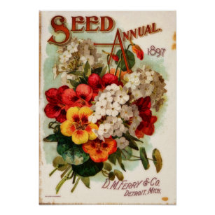 Steele Briggs Seed Vintage Flowers Seed Packet Catalogue Advertisement Poster