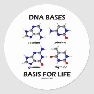 DNA Bases Basis For Life (Chemistry Molecules) Classic Round Sticker