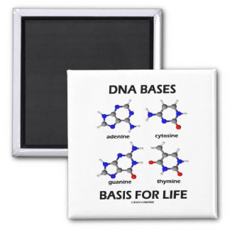 DNA Bases Basis For Life (Chemistry Molecules) Refrigerator Magnets
