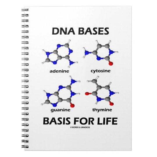 DNA Bases Basis For Life (Molecular Structure) Notebook