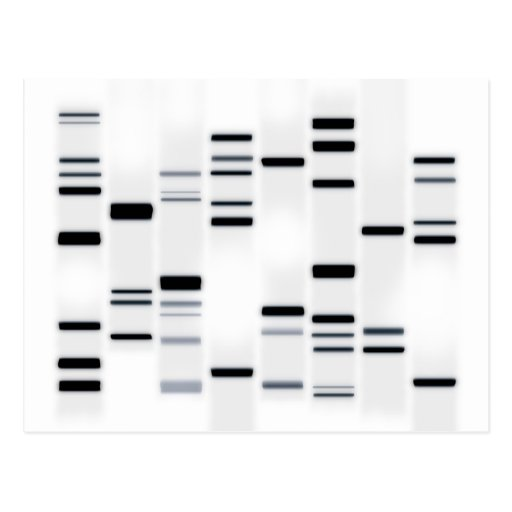 DNA Code Art Black on White Postcards