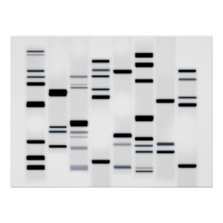 DNA Code Art Black on White Posters
