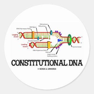 DNA constitucional (réplica de la DNA) Pegatina Redonda