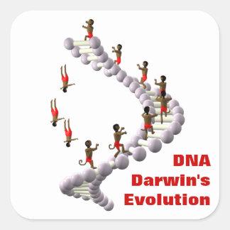 DNA Darwin's Evolution Square Stickers