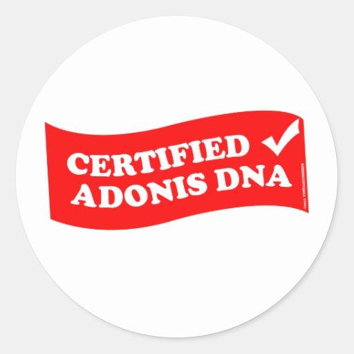 DNA DE ADONIS PEGATINA REDONDA