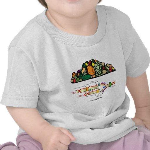 DNA del vegetariano (actitud vegetariana) Camisetas