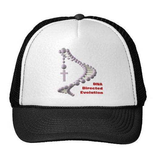 DNA Directed Evolution Hats