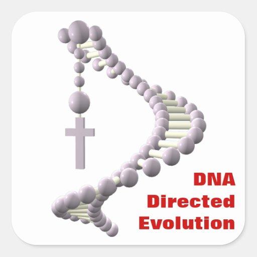 DNA Directed Evolution Square Sticker
