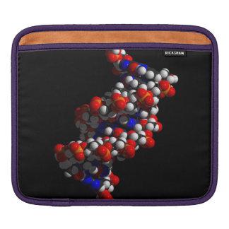 DNA Double Helix Model iPad Sleeves