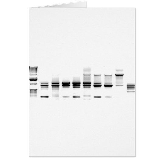 DNA Gel Card