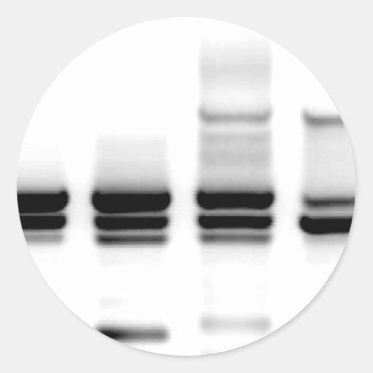 DNA Gel Classic Round Sticker