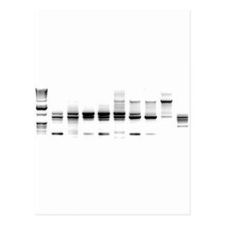 DNA Gel Postcard