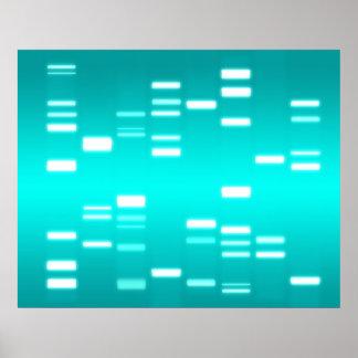 Genetics Posters | Zazzle