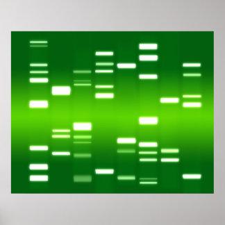 DNA Genetic Code Green Poster