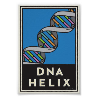 DNA Helix Poster