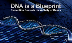Genetic research posters zazzle dna is a blueprint poster malvernweather Choice Image