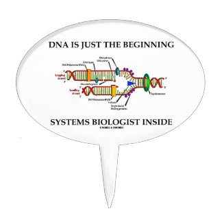 DNA Is Just The Beginning Systems Biologist Inside Cake Picks