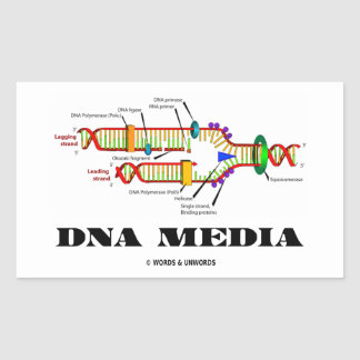DNA Media DNA Replication Rectangle Stickers