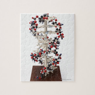 DNA Model Jigsaw Puzzles