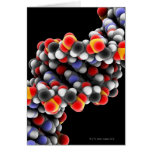 DNA molecule. Molecular model of DNA Cards