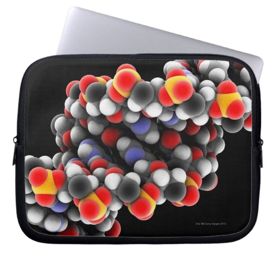 DNA molecule. Molecular model of DNA Laptop Sleeve