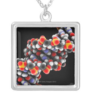 DNA molecule. Molecular model of DNA Silver Plated Necklace