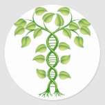 DNA plant concept Stickers