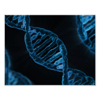 DNA POSTERS