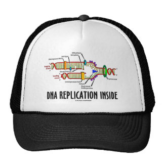 DNA Replication Inside (DNA Attitude) Hat