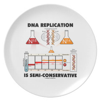 DNA Replication Is Semi-Conservative Dinner Plate