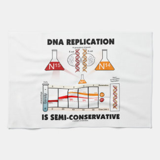 DNA Replication Is Semi-Conservative Kitchen Towel