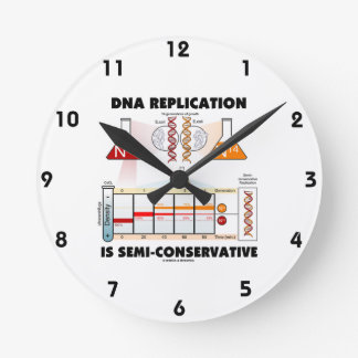 DNA Replication Is Semi-Conservative Round Clock