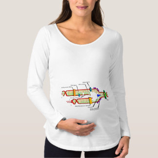 DNA Replication Maternity T-Shirt