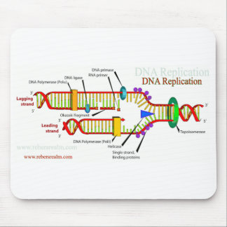 DNA Replication Mouse Pad