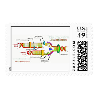 DNA Replication Postage Stamp