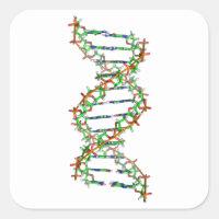 DNA - science/scientist/biology Square Sticker
