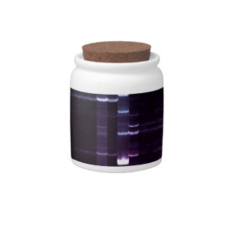 DNA Sequencing Gel 2 Candy Dish