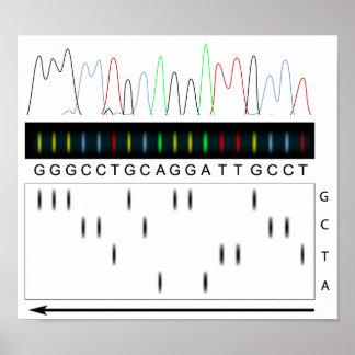 DNA sequencing principle Poster