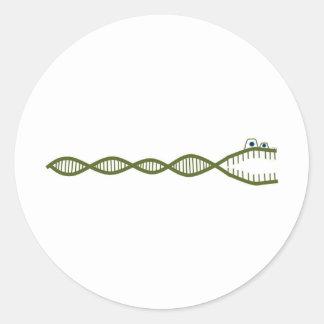 DNA ROUND STICKERS