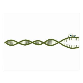 DNA TARJETAS POSTALES