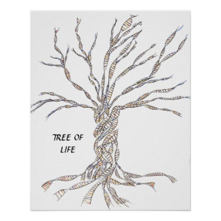 DNA TREE or Tree of Life POSTER BLUE