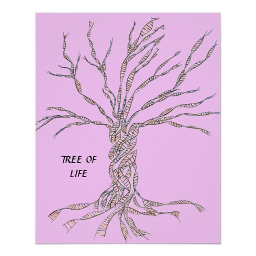 DNA TREE or Tree of Life POSTER PINK