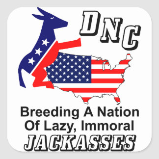 DNC: Breeding A Nation Of J@ckasses! Square Sticker