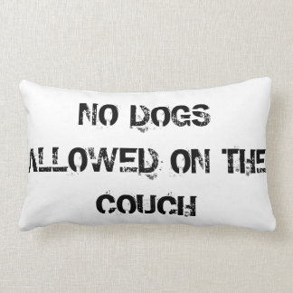 Do Dogs Allowed On The Couch Pillow