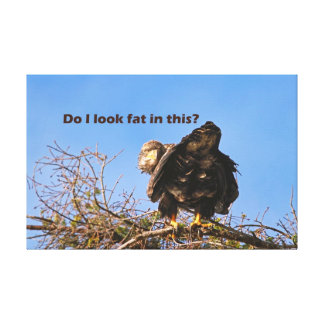 """""""Do I Look Fat In This"""" Eagle Stretched Canvas Prints"""
