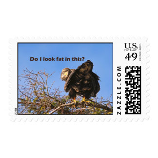 """Do I Look Fat In This"" Eagle Stamps"