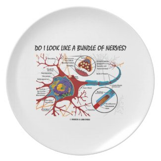 Do I Look Like A Bundle Of Nerves? Neuron Synapse Plates